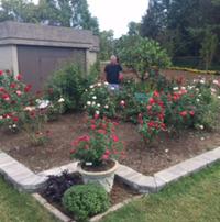 Rose Study Garden