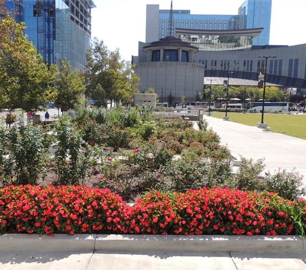 Music City Garden
