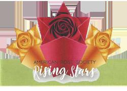 ARS-Rising-Stars