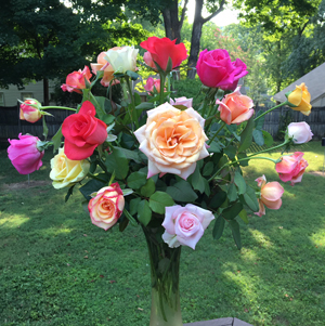 Refrigerated_roses
